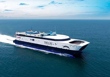 bay_ferries_the_cat